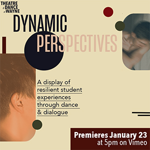 Dynamic Perspectives